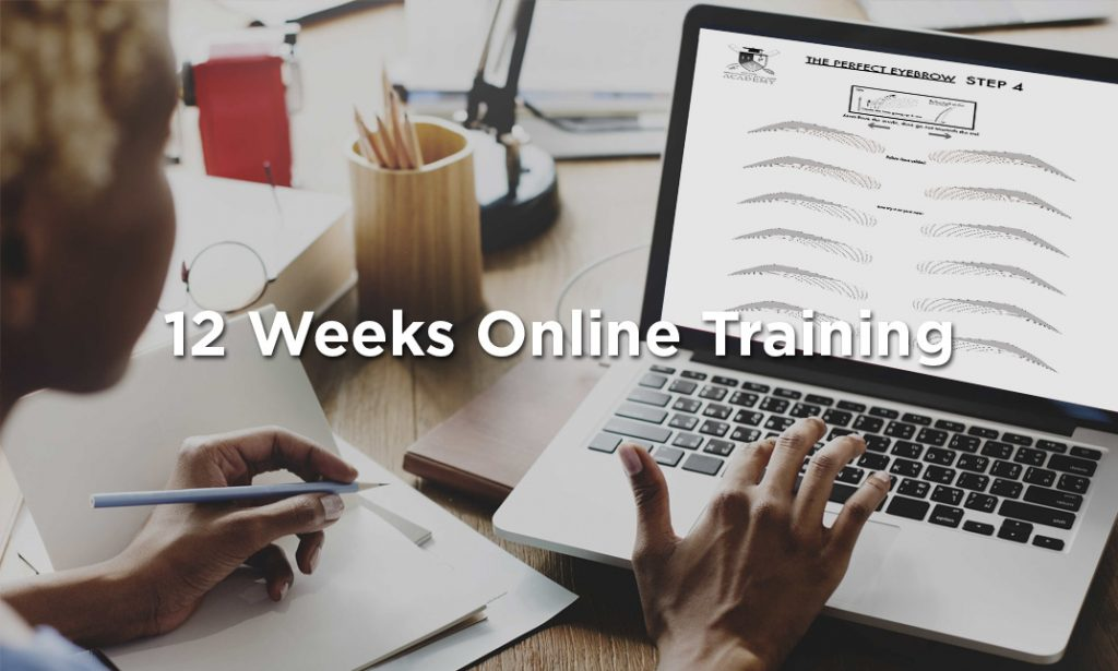12 weeks online training