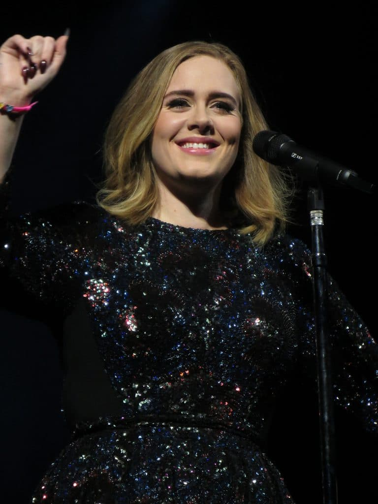 Adele Microbladed Brows